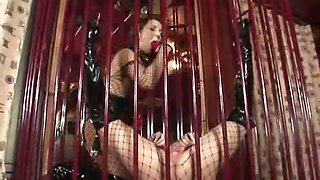 Two irresistible lesbians in fishnets tasting and fingering