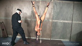 This submissive chick is getting her pussy toyed and she's upside down